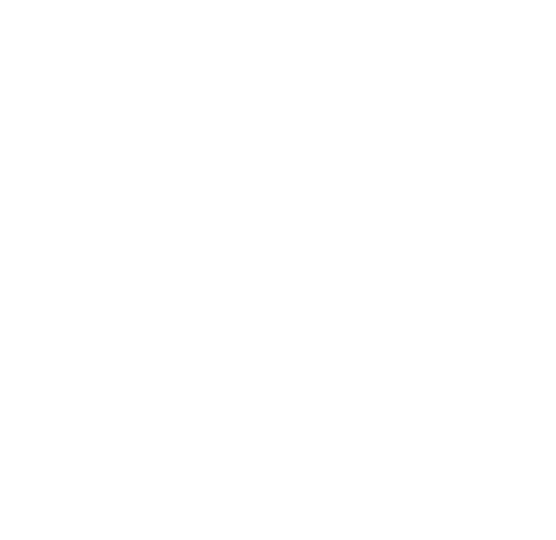Guardian Security & Protection Services